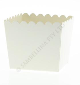 box- scallopsam white