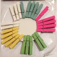 Favour Wooden Pegs