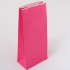 Paper Bag- Hot Pink