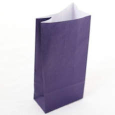 Paper Bag- Purple