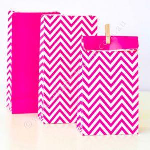 BAG- PartyiIlume- Chevron Hot Pink